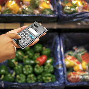 food_budget_economic